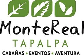 Logo Montereal 2013 - copia